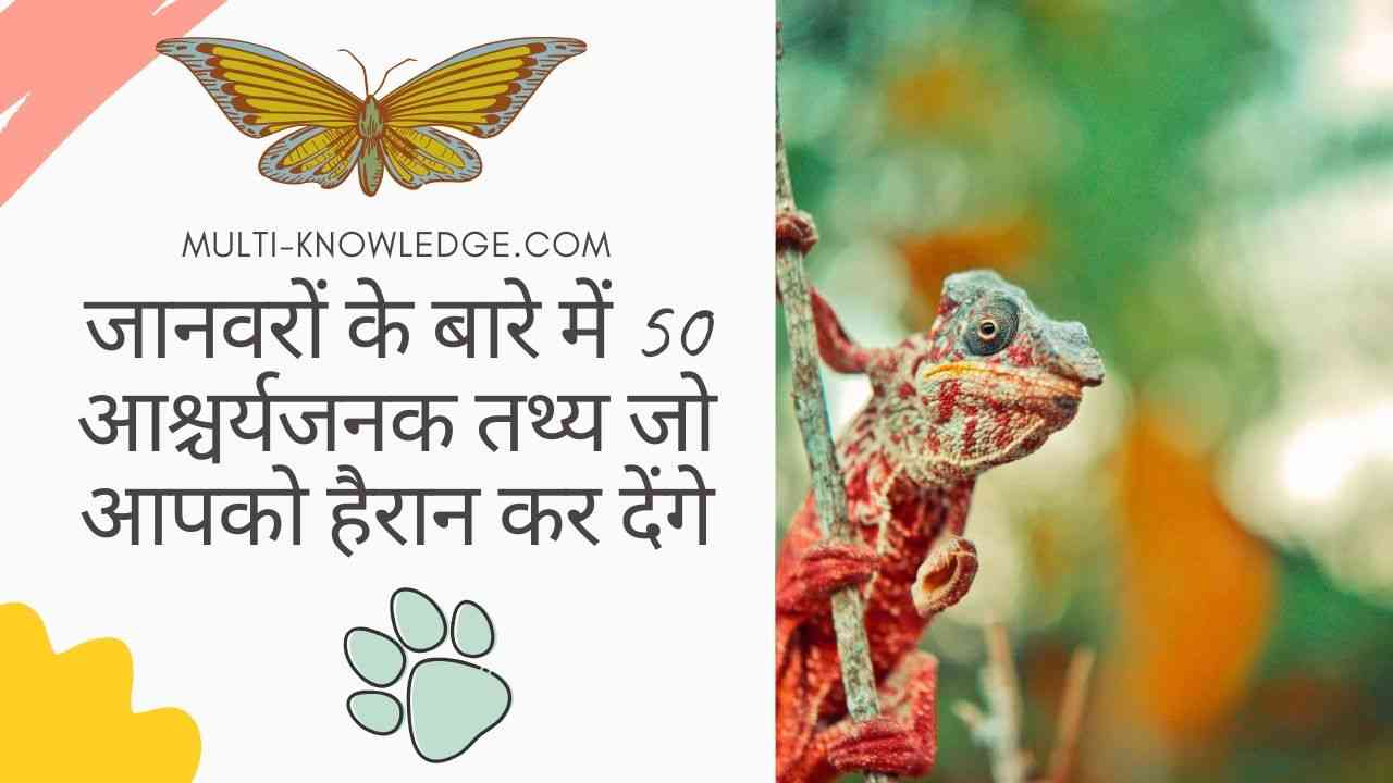 Amazing fact about Animals in Hindi